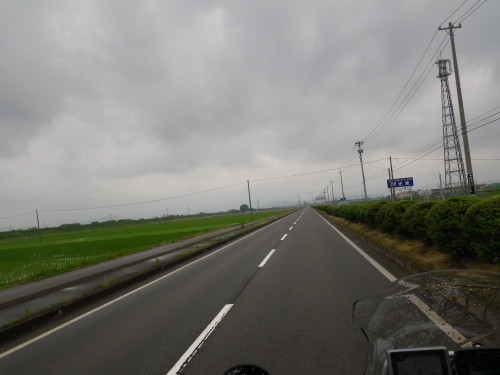 Imgp0804