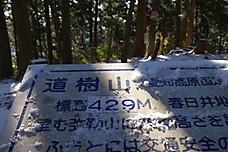 Imgp6006