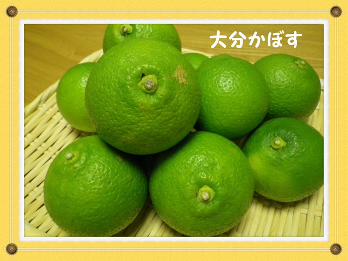 Imgp3814_kabosu