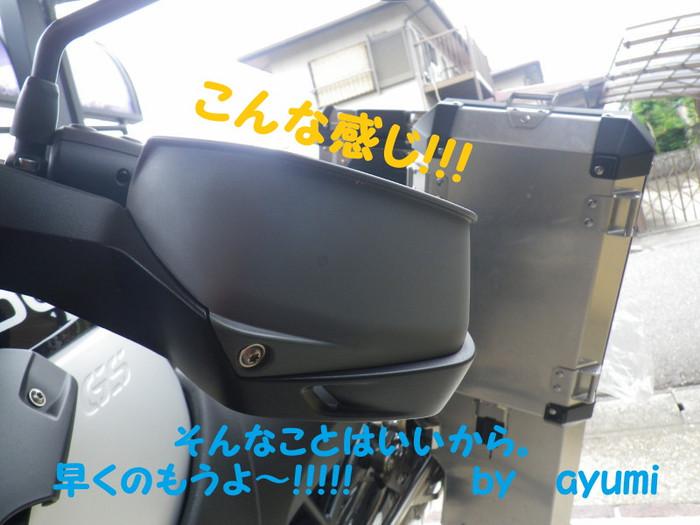 Imgp3994_001